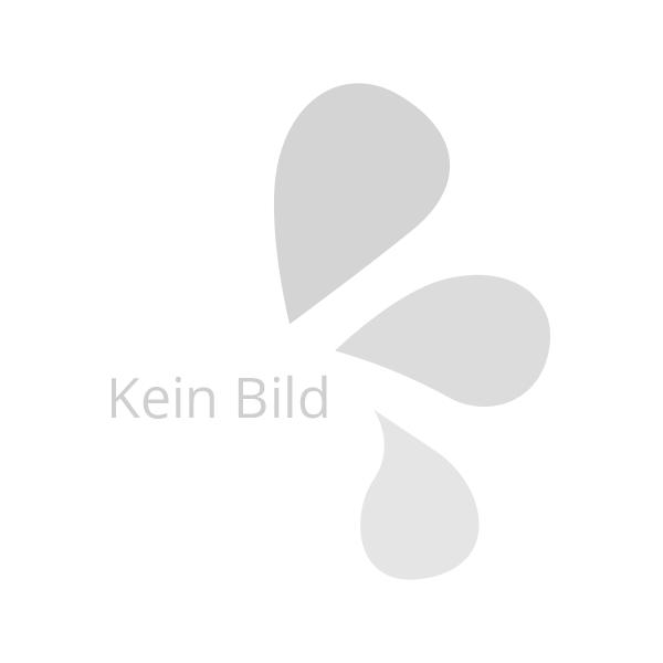 Stand WC-Garnitur Wenko mit Zeitungshalter aus Stahl